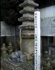 hitachi-oguri-36c.jpg